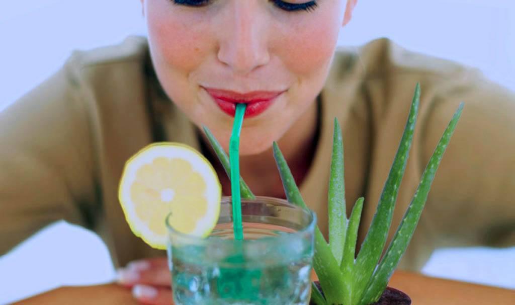 como depurar tu organismo con dieta y otros metodos