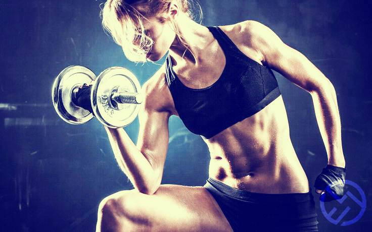 aprende la teoria del entrenamiento con pesas