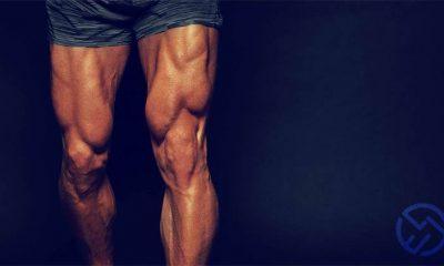 los mejores ejercicios de cuadriceps para piernas
