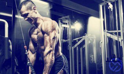 Descubre los mejores ejercicios de triceps de volumen y fuerza