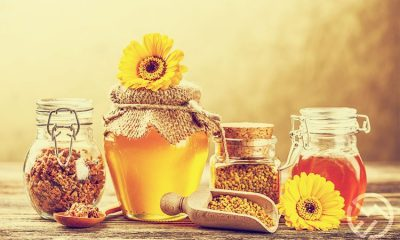 descubre las propiedades de la miel de abeja para nuestra salud