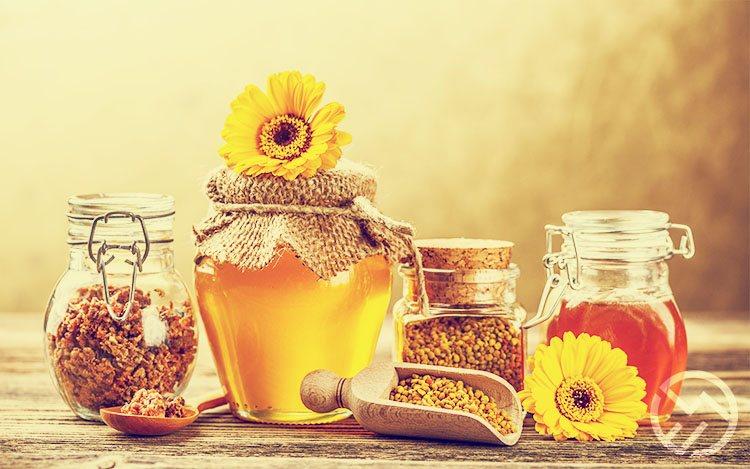Polen de abeja como tomar para adelgazar rapido