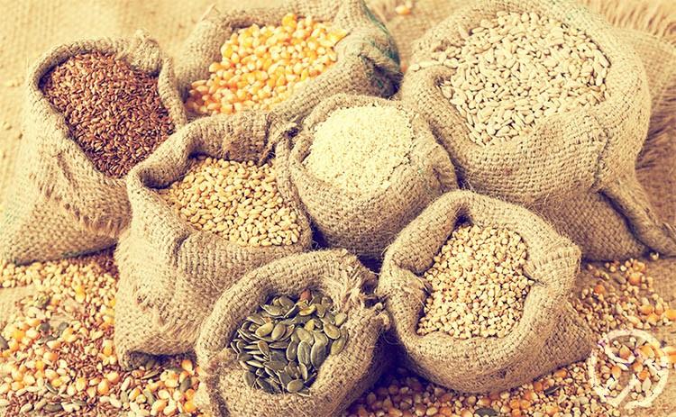 no consumir cereales y grano