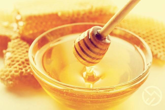 porque la miel es buena para el organismo