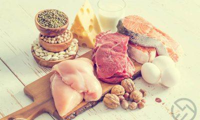que son las proteinas