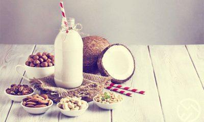 las mejores leches vegetales saludables