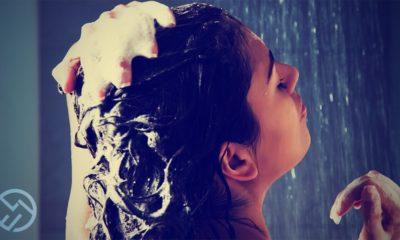las mejores marcas de champu para el cabello seco