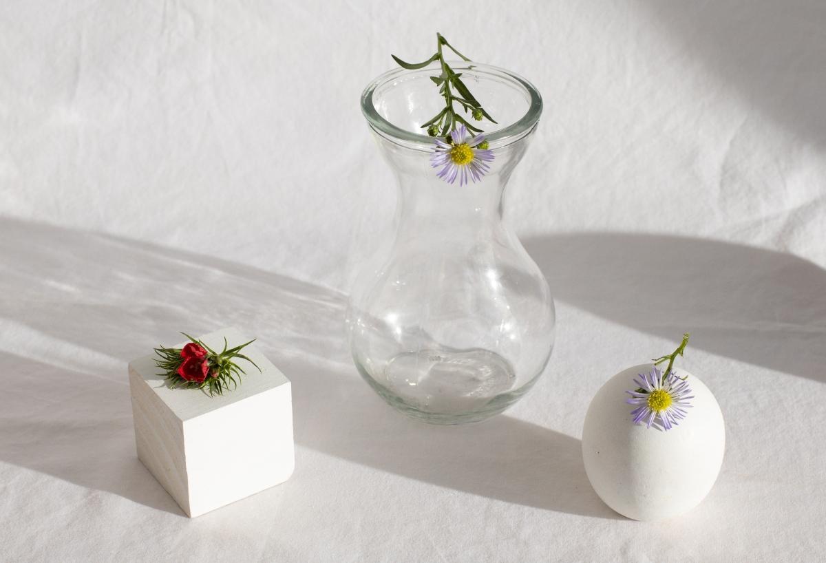tipos de flores bach