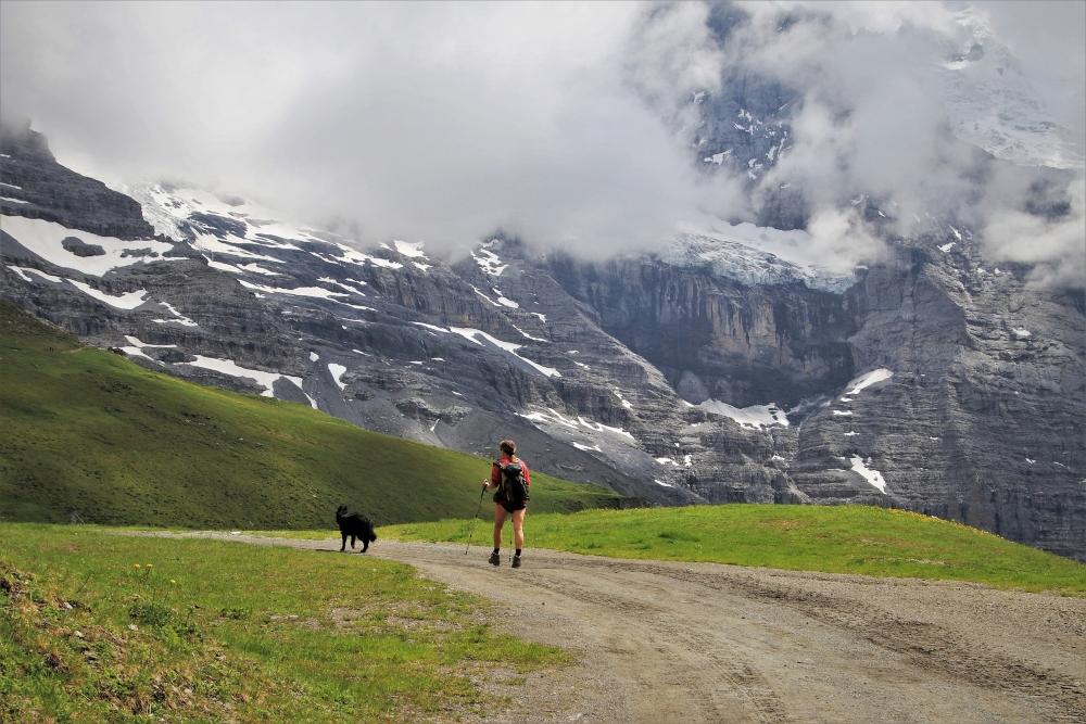 trail introducción