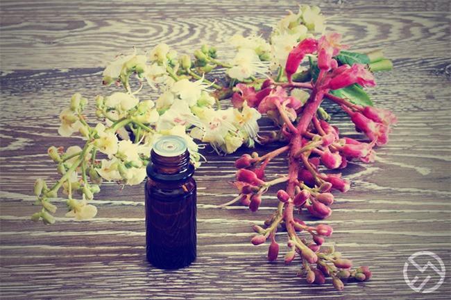 flores de bach baratas