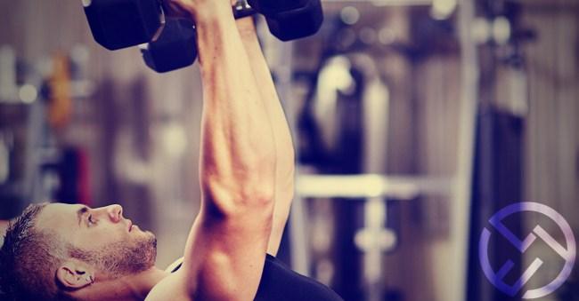 l carnitina antes de entrenar