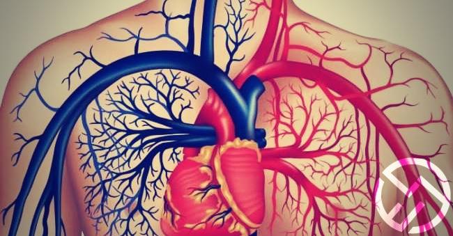 evitar problemas del corazon