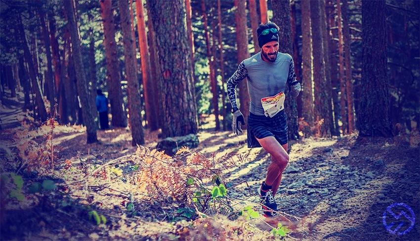 Alex Cross Run Pdf