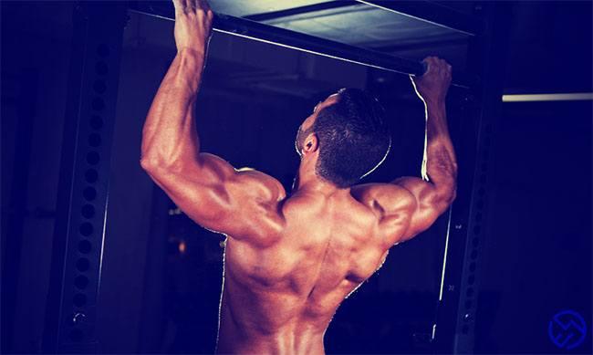 Que musculos se trabajan en las dominadas